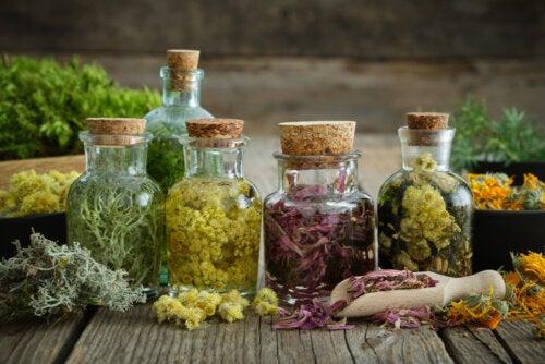 ¿Qué son las tinturas herbales y para qué se utilizan?