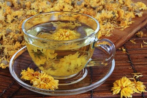 Té de crisantemo: beneficios y precauciones