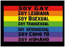 PODER LEGISLATIVO ASUME CRIMINAL DISCRIMINACIÓN CONTRA LA COMUNIDAD LGTBI